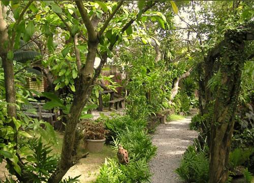 horta pomar e jardim atividadesPousada Pomar da Pipa – Praia Da