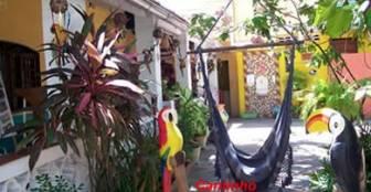 Área Verde :: Pousada Vitoria - Recife PE