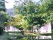 jardim :: Pousada Tarituba - Paraty RJ